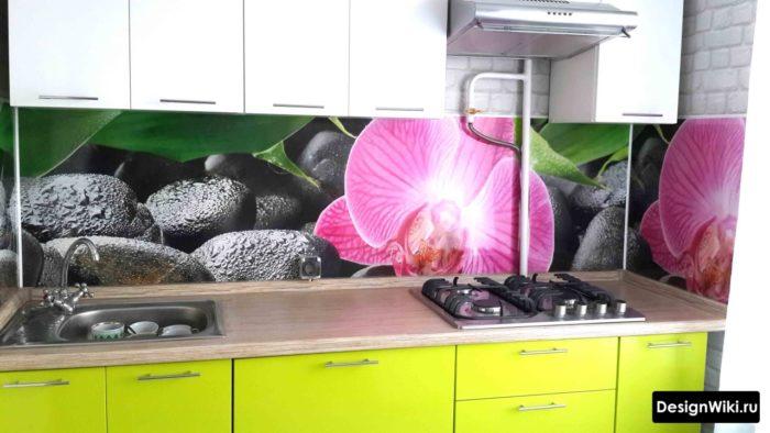 Фартук для кухни из пластика и изображением цветка