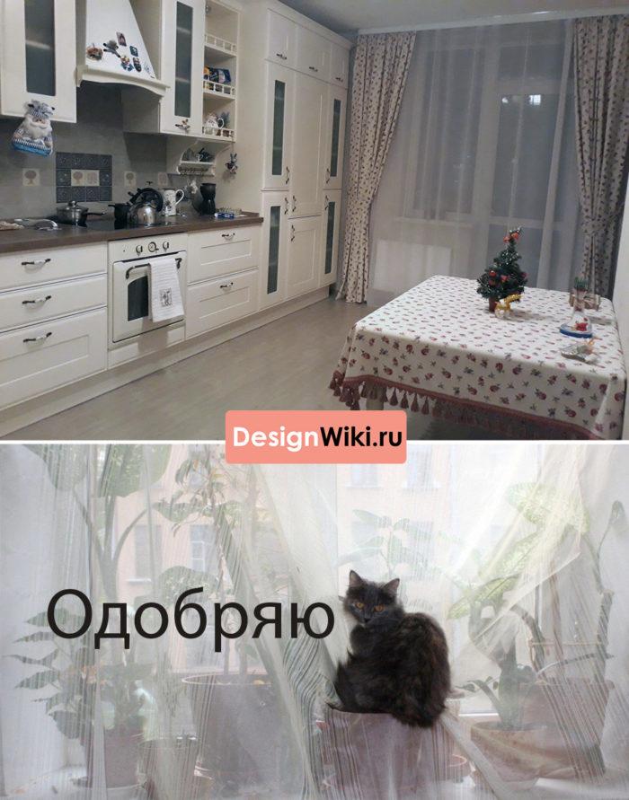 Кот и DesignWiki.ru одобряют тюль в дополнение к шторам на кухне с балконом